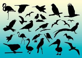 Free Birds Vector Silhouettes