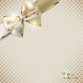 Exquisite bow invitation 02
