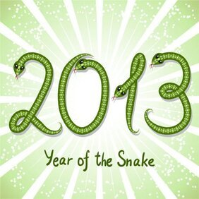 2013 Year of the Snake creative graphics 03 - vector materia
