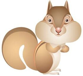 Squirrel Vector 4