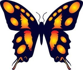 Butterfly Vector 14