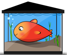 Free Vector Gold Fish Tank