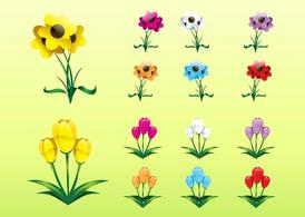 Colorful Flower Collection