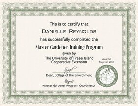 Six Certificate Design