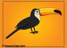 Cartoon Toucan