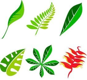 Free Leaf Vector Art Package