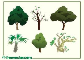 Vector Tree Images