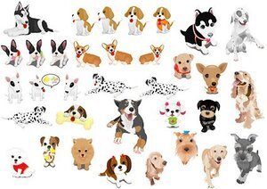 A variety of pet dog