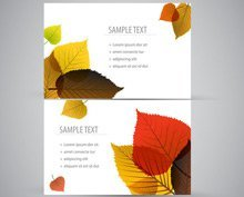 Natura Business Card