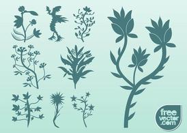 Silhouette Vector Plants