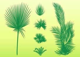 Palm Leaves Set