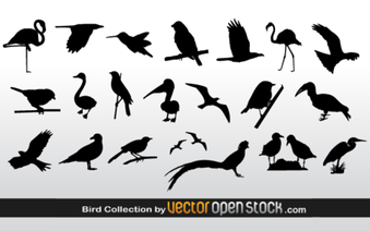 Gratis vektor Bird silhuetter Collection
