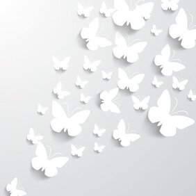Dokument White Paper řez Butterfly Pack