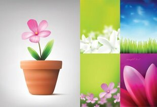 Absolutely beautiful flowers and plant material