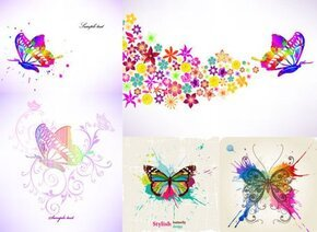 Colorful Butterfly Theme