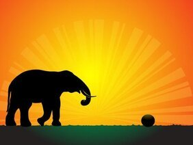 Silhouet olifant in de zonsondergang Vector Wallpaper