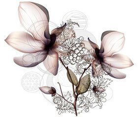 Free Orchid Flower Vector Art