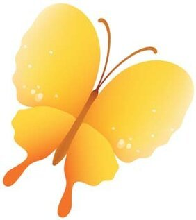 Butterfly Vector 32