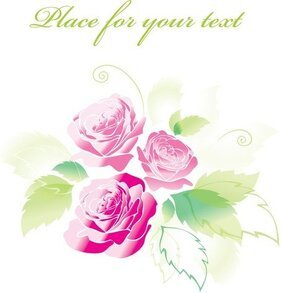 Beautiful Roses Greeting Cards 04