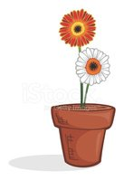 Flower Pot,Potted Plant,Flo...