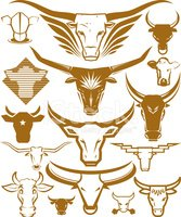 Bull - Animal,Cow,Texas Lon...