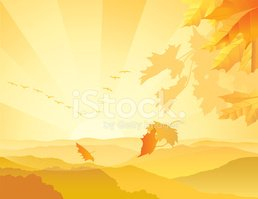 Autumn,Landscape,Morning,Su...