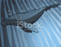 Whale,Backgrounds,Cartoon,A...
