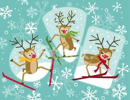 Reindeer,Animal,Snow,Skiing...