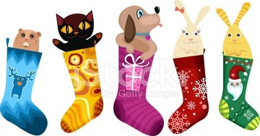 Christmas,Dog,Domestic Cat,...