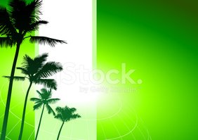Palm Tree,Environmental Con...