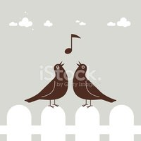 blackbird has spoken bird song duet