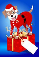 Dog,Santa Claus,Christmas,P...