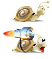Snail,Speed,Slow,Jet Engine...