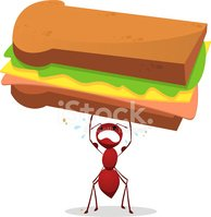 Ant,Sandwich,Cartoon,Insect...