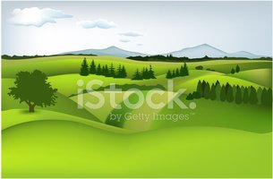 Field,Mountain,Meadow,Hill,...