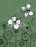 Butterfly - Insect,Flower,O...