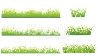 Grass,Natural Pattern,Set,g...