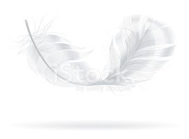 Feather,White,Lightweight,S...