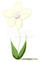 Flower,Drawing - Activity,S...