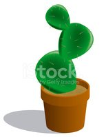 Cactus,Mexico,Potted Plant,...