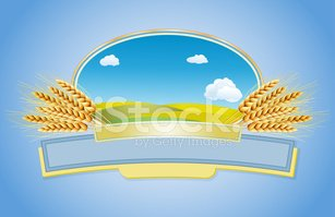 Wheat,Rural Scene,Landscape...