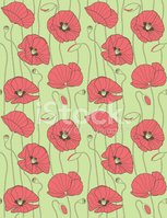 Poppy,Wallpaper Pattern,Pat...
