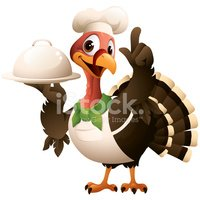 Turkey - Bird,Thanksgiving,...
