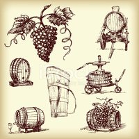 Hand drawn vector wine element
