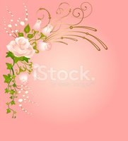 Rose - Flower,Frame,Ivy,Pic...