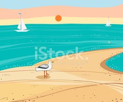 Beach,Sea,Seagull,Sunset,Sa...