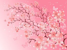 Japanese Culture,Blossom,Tr...