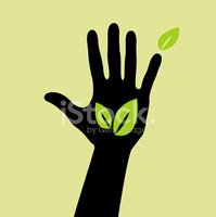 Human Hand,Help,Leaf,People...