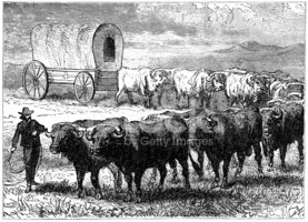 Covered Wagon,Cowboy,Horse ...