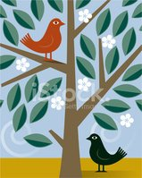 Tree,Bird,Animal,Leaf,Natur...